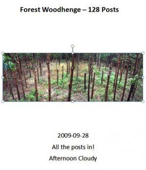 Forest-Woodhenge-25