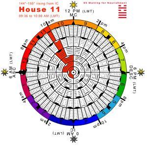Hx-arcs-27H11-Hx05-Waiting-for-Nourishment Copy